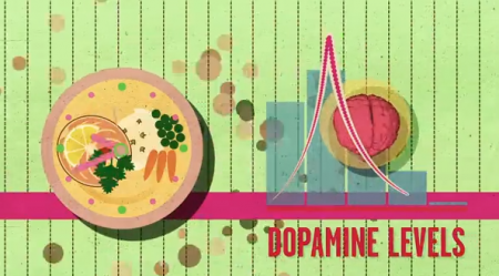 Dopamine levels out with healthy food from Starling Fitness
