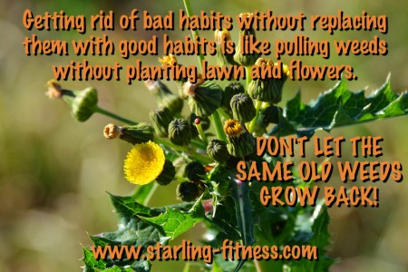 Weeds by Starling Fitness